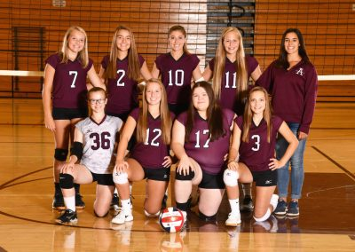 2019-20 JV Volleyball team pic-PG